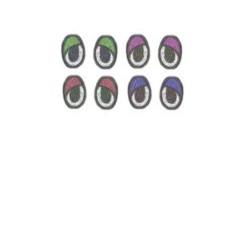Oczy elpsa 36X24 z kolorową powieką powieką